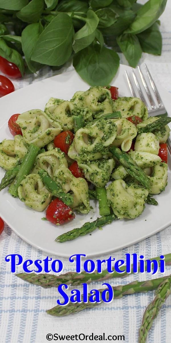 A serving of Pesto Tortellini Salad.