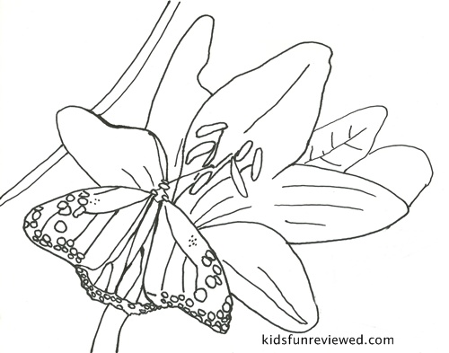 Butterfly Coloring Pages Sweet Party Place