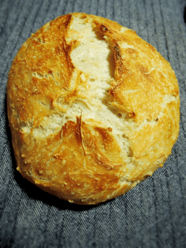 beginners no knead peasant bread.2