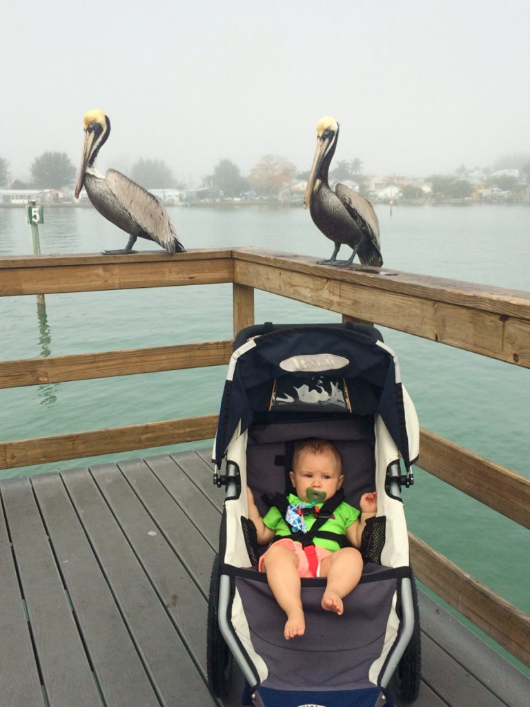 Anna Maria Island and Bradenton, Florida