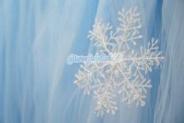 frozen-18