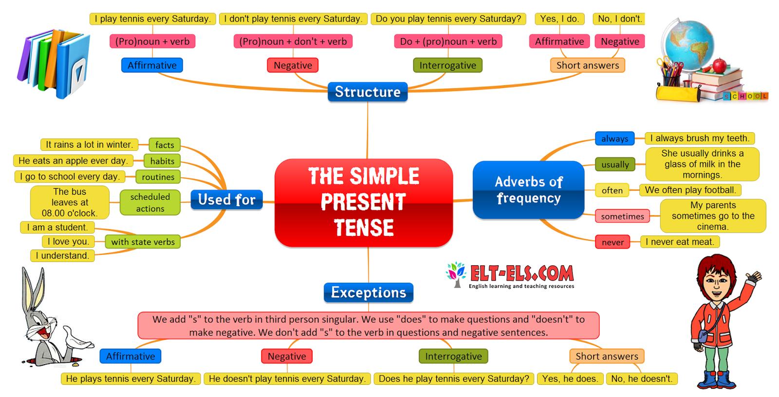 The Simple Present Tense B