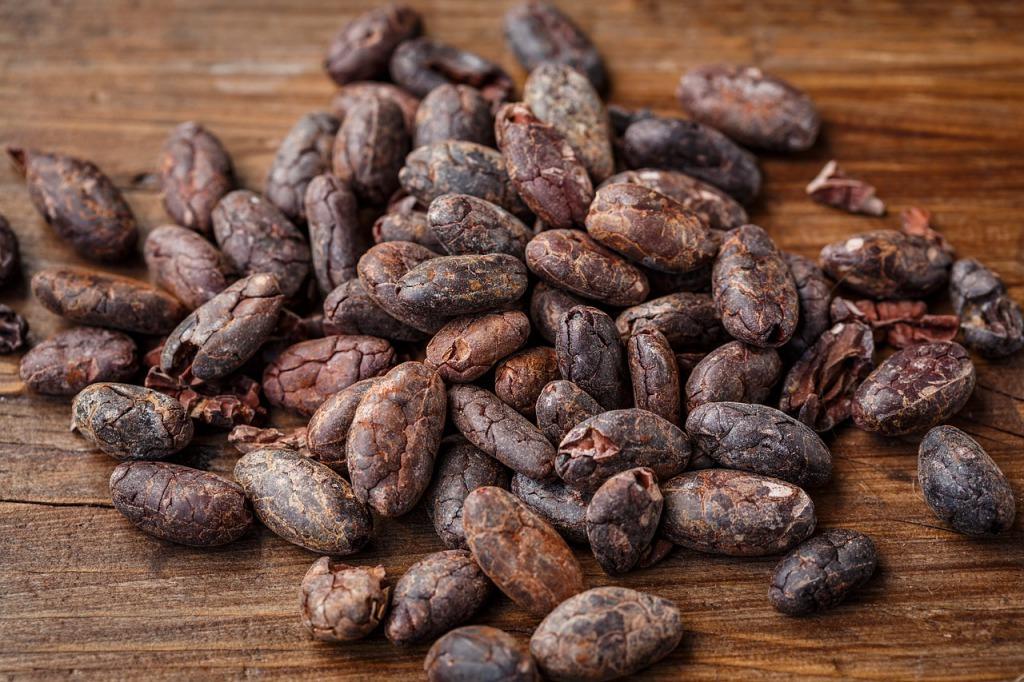 カカオ豆はたったの3種類!希少すぎるクリオロ種ってなに?