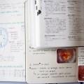 お菓子に関するフランス語の本おすすめの4冊を紹介するよ!