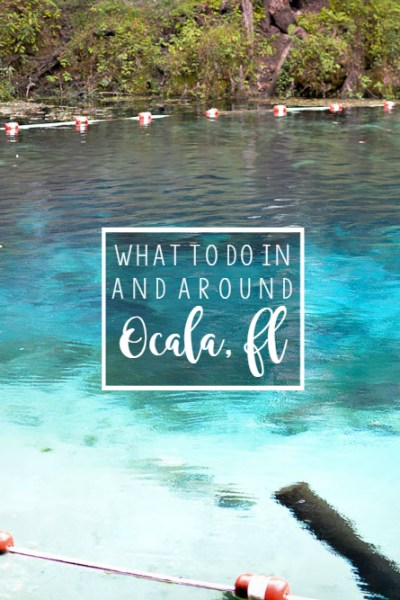 What To Do In & Around Ocala, FL