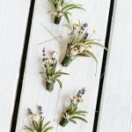 DIY Boutonnieres Using Dried Flowers