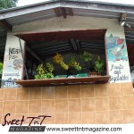 Manzanilla Fruit stall in sweet T&T for Sweet TnT Magazine, Culturama Publishing Company, for news in Trinidad, in Port of Spain, Trinidad and Tobago, with positive how to photography.