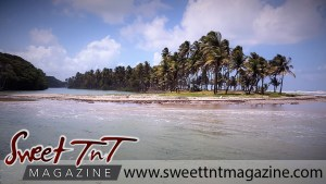 Manzanilla view in sweet T&T for Sweet TnT Magazine, Culturama Publishing Company, for news in Trinidad, in Port of Spain, Trinidad and Tobago, with positive how to photography.