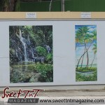Oval Bloody Bay Waterfall by Earl Manswell and Manzanilla by Sumintra Ramkissoon on wall at the Oval in sweet T&T for Sweet TnT Magazine, Culturama Publishing Company, for news in Trinidad, in Port of Spain, Trinidad and Tobago, with positive how to photography.