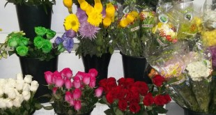 Valentines flowers in sweet T&T for Sweet TnT Magazine, Culturama Publishing Company, for news in Trinidad, in Port of Spain, Trinidad and Tobago, with positive how to photography.