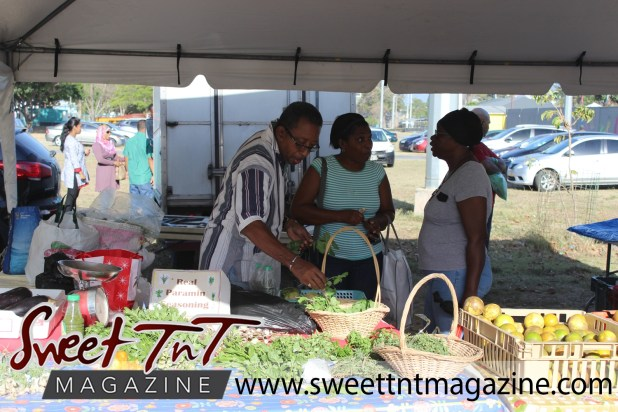 Farmers' Market at Queen's Park Savannah, Port of Spain vendor chats with mature couple while selling seasoning, shadon beni, celery, parsley, chive, oranges, in baskets, Muslim women in background, in parking lot in Sweet T&T, Sweet TnT, Trinidad and Tobago, Trini, vacation, travel