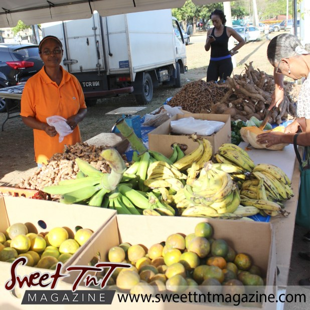 Elderly woman looks at hand with knife cutting pumpkin, in front ripe plantain, green plantain, ginger, smiling vendor wearing orange t shirt, boxes of oranges, woman on phone in background wearing black vest, black leggings, purple waistband, at Farmers' Market at Queen's Park Savannah, Port of Spain in parking lot in Sweet T&T, Sweet TnT, Trinidad and Tobago, Trini, vacation, travel