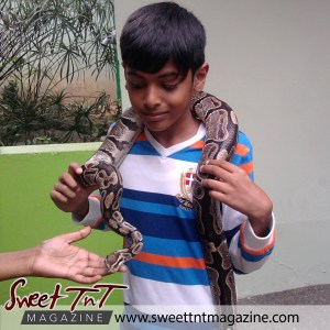 Snake petting, Aadam Ali at Emperor Valley Zoo, Sweet T&T, Sweet TnT, Trinidad and Tobago, Trini, vacation, travel, Zoorific, one love