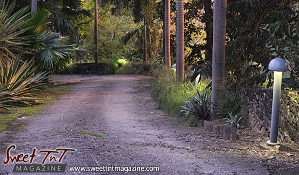 Scenic pathway on Lady Chancellor Hill Port of Spain for story original outdoor gym in Sweet T&T, Sweet TnT, Trinidad and Tobago, Trini, vacation, travel