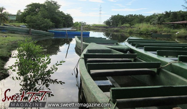 Caroni Swamp, boats, Scarlet Ibis, Sweet T&T, Sweet TnT, Trinidad and Tobago, Trini, Travel, Vacation, Tourist,
