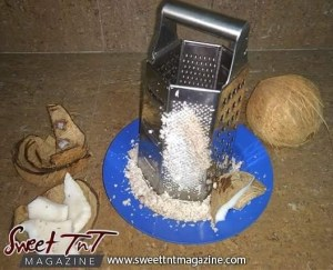 Coconut and grater for sweetbread in sweet T&T for Sweet TnT Magazine, Culturama Publishing Company, for news in Trinidad, in Port of Spain, Trinidad and Tobago, with positive how to photography.
