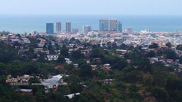 Survive the lockdown. Port of Spain