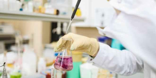 Protein purification. Scientist in laboratory