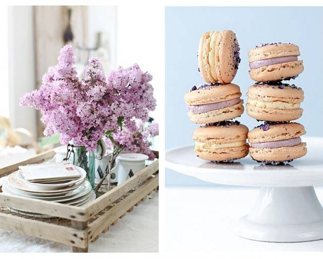 lilac macaroons