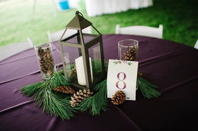 Plum Lakeside Ohio Wedding {Mindy Sue Photography} 23