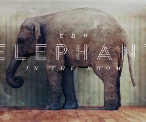 ELEPHANT-series-img-1024x578