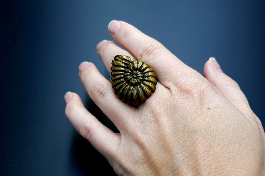Ammonite Ring 03