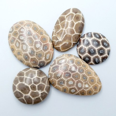 5 cabochons Faux Petoskey Stone from Polymer Clay