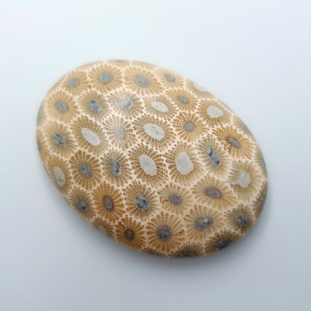 Cabochons Faux Petoskey Stone from Polymer Clay (#7)