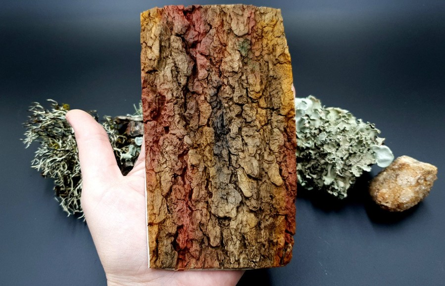 Silicone Texture Tree Bark #1 - 155x90mm 3