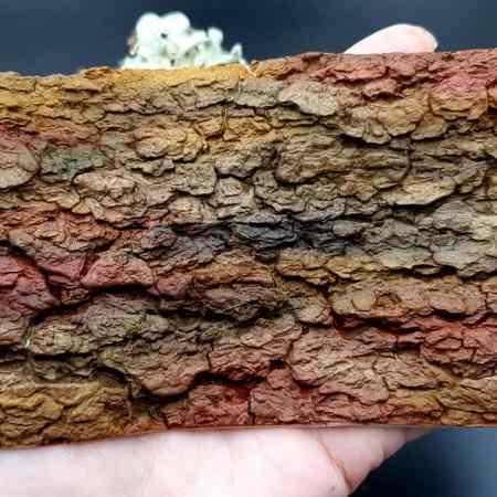 Silicone Texture Tree Bark #1 – 155x90mm