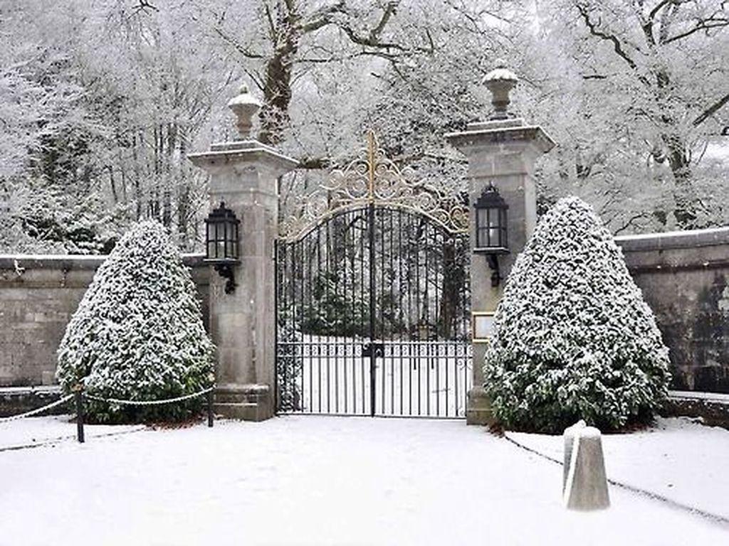Amazing Winter Garden Landscape 02