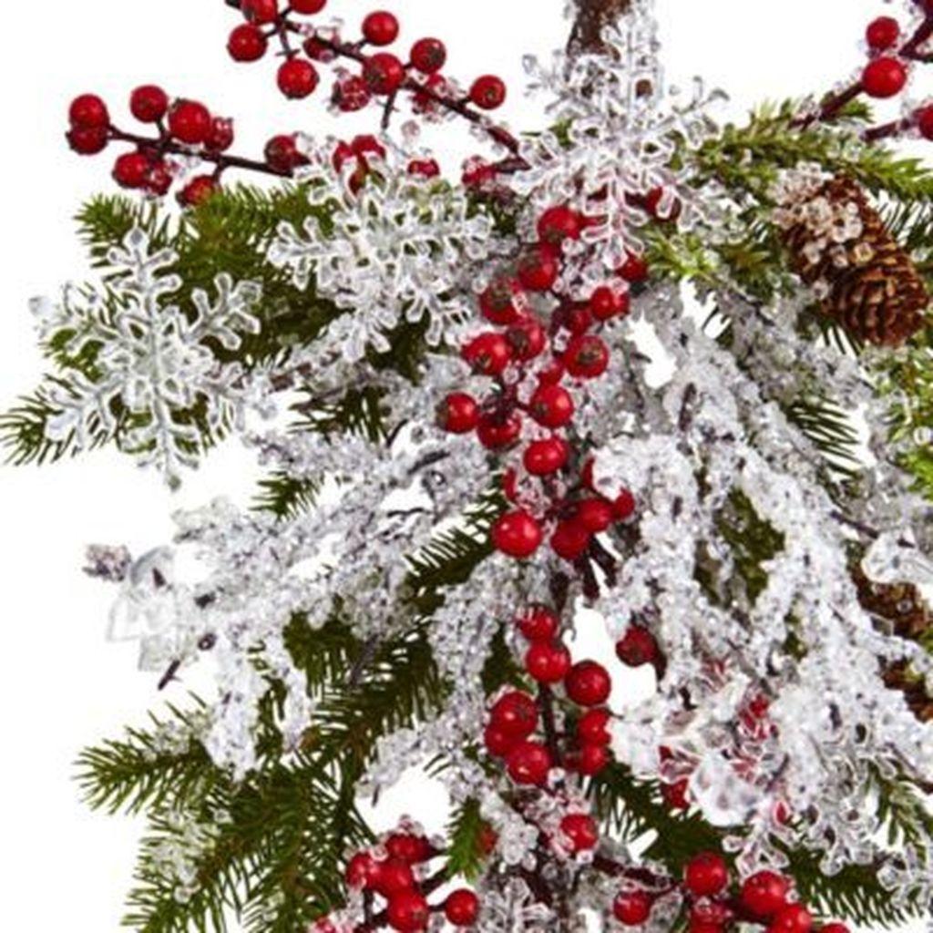 Amazing Winter Garden Landscape 03