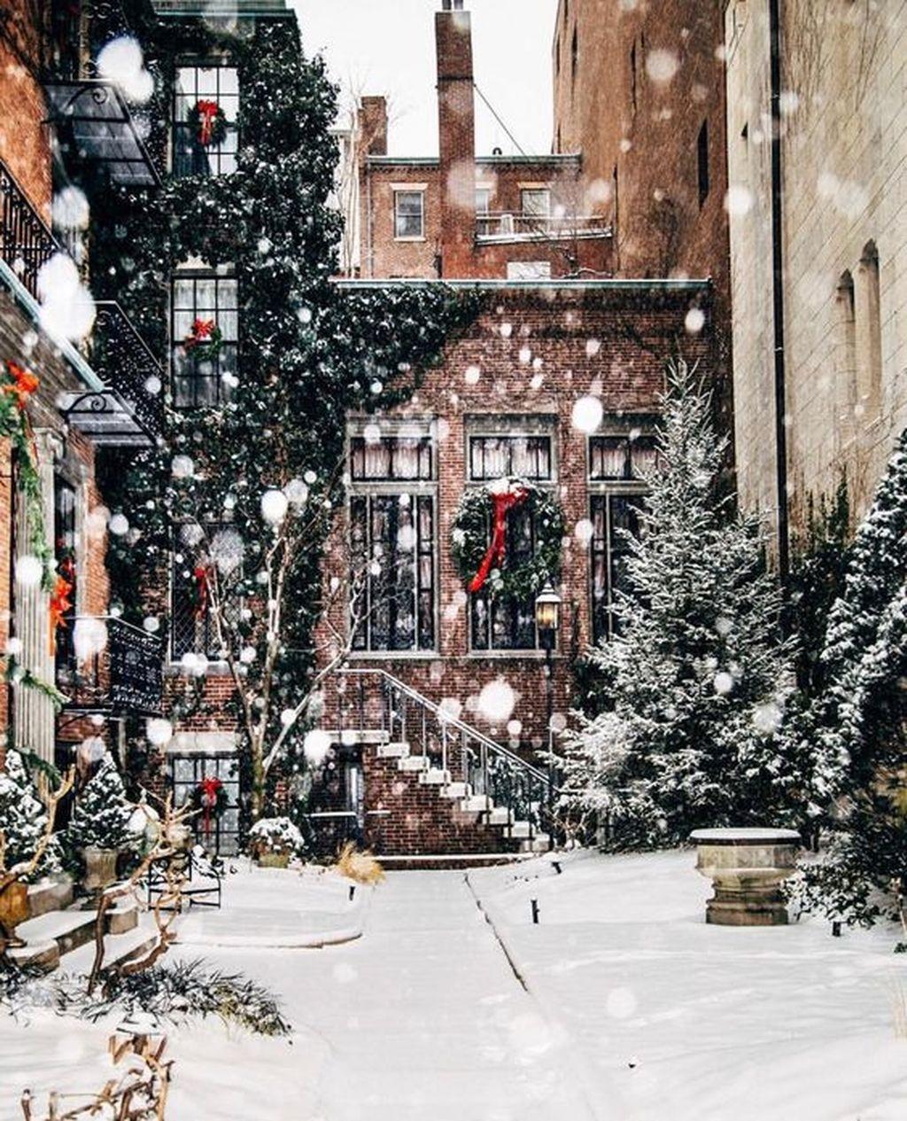 Amazing Winter Garden Landscape 23