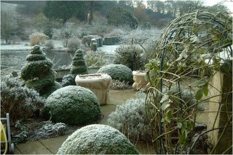 Amazing Winter Garden Landscape 26