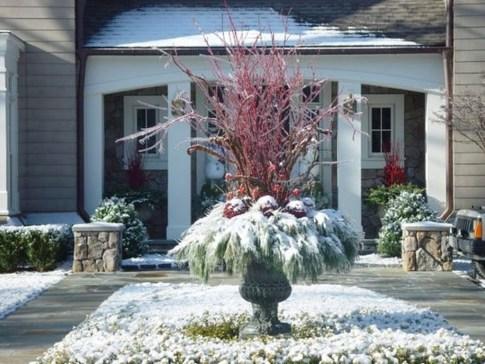 Amazing Winter Garden Landscape 37