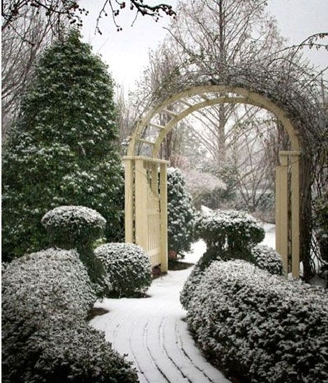Amazing Winter Garden Landscape 39