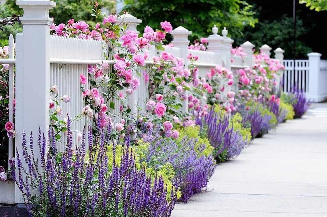 Front Yard Fence Ideas That You Need To Try 13