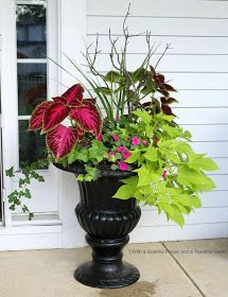 Beautiful Summer Planters Ideas For Front Door Decor 04