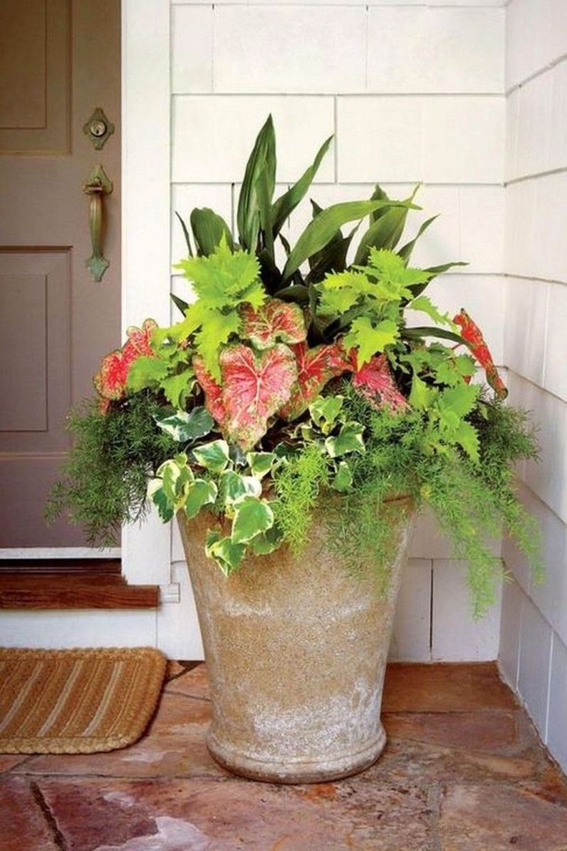 Beautiful Summer Planters Ideas For Front Door Decor 23