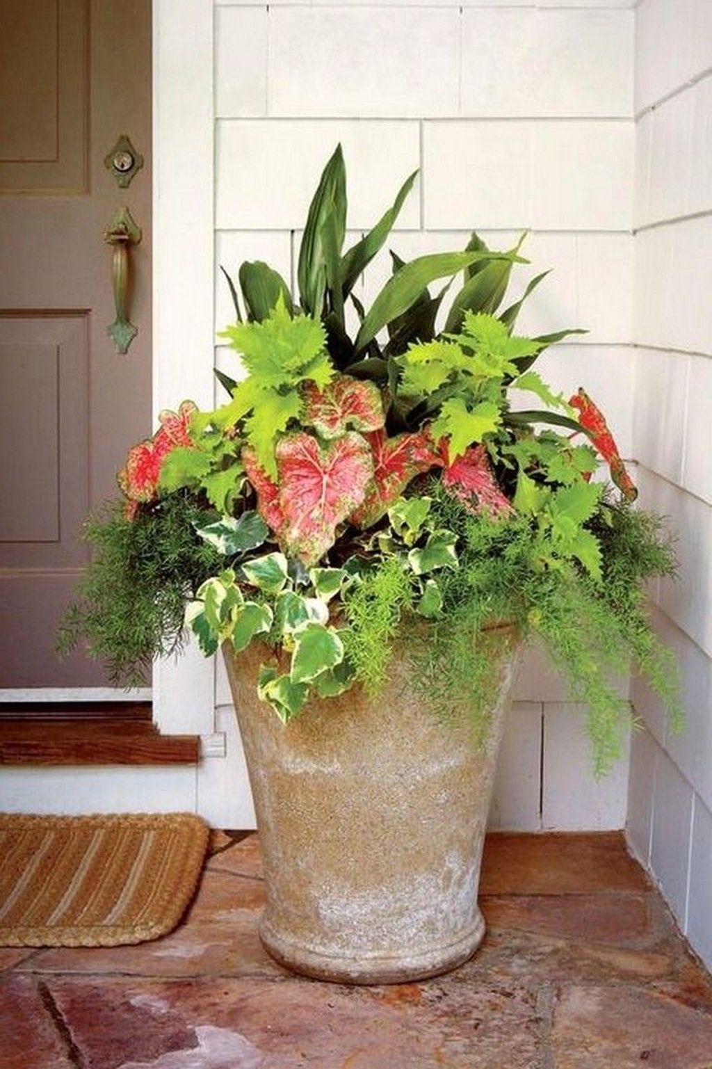 Beautiful Summer Planters Ideas For Front Door Decor 23