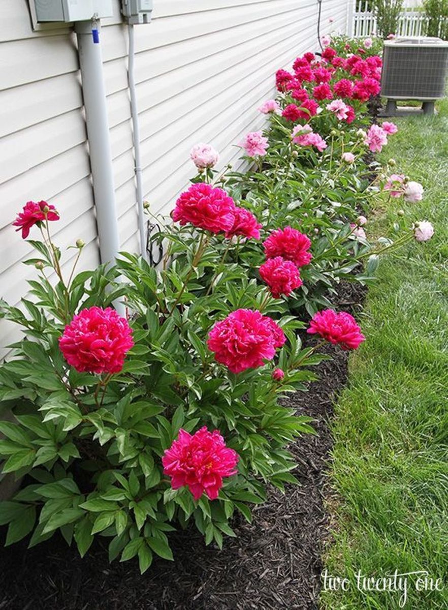 Lovely Flower Beds Design Ideas In Front Of House 11