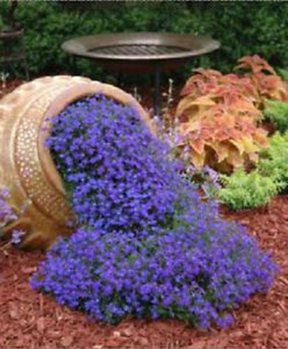 Stunning Backyard Flower Garden Ideas You Should Copy Now 32