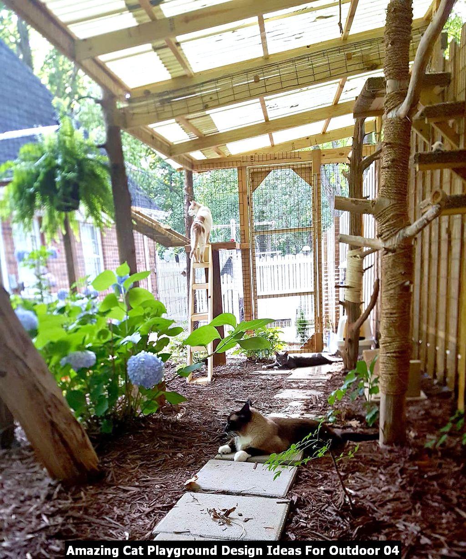 Amazing Cat Playground Design Ideas For Outdoor 04
