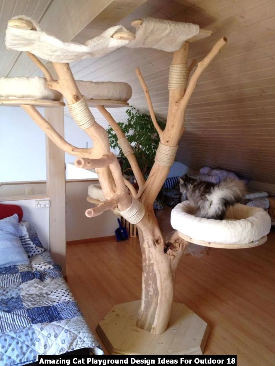 Amazing Cat Playground Design Ideas For Outdoor 18