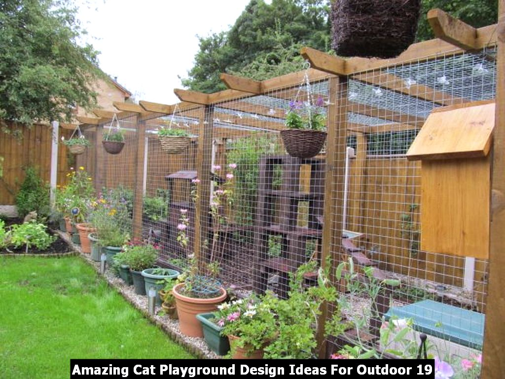 Amazing Cat Playground Design Ideas For Outdoor 19