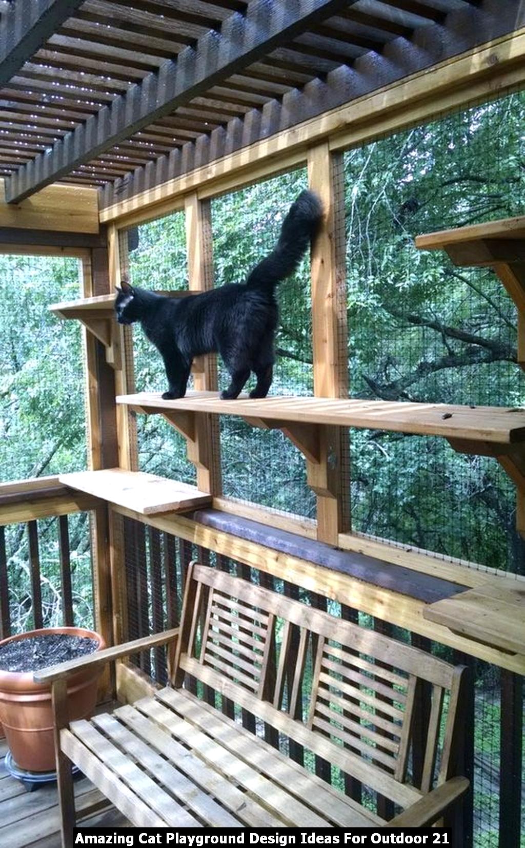 Amazing Cat Playground Design Ideas For Outdoor 21