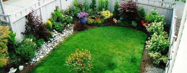 Small Yard Garden Ideas
