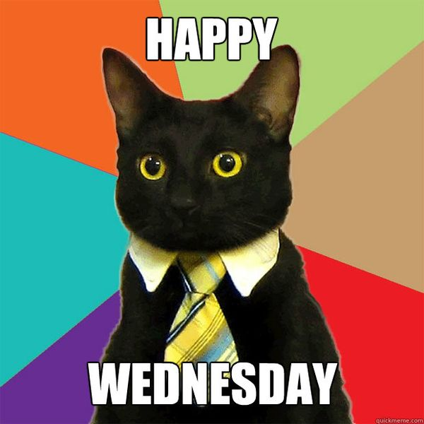 happy wednesday meme with black cat