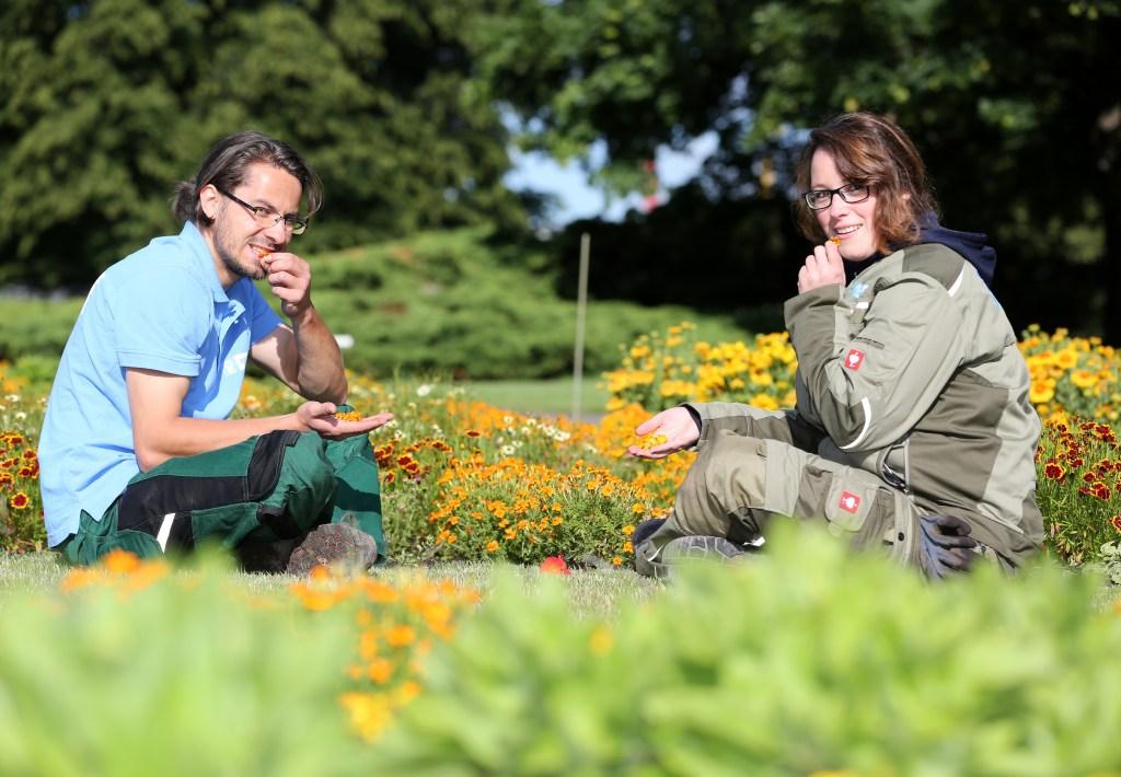 egapark Erfurt - essbare Blumen