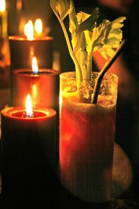 spooky cocktails - a bloody mary